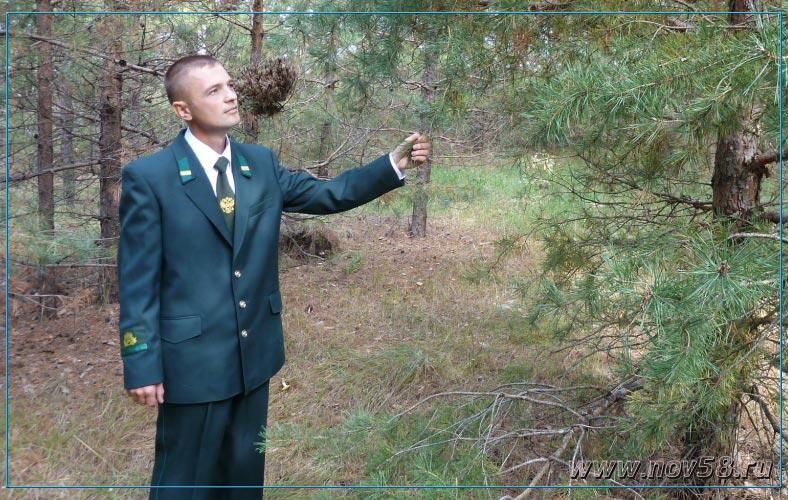 мастер леса должностная инструкция